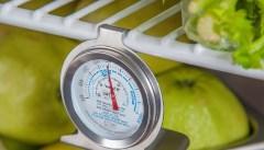 Холодильники и продукты — оптимальный градус взаимодействия
