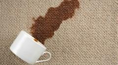Только эффективные средства. Как почистить ковер в домашних условиях?