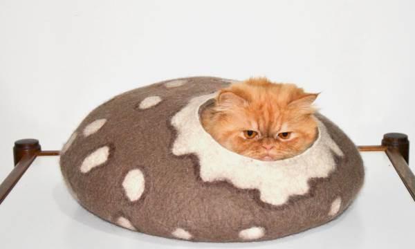 Простые модели домиков для кошки своими руками