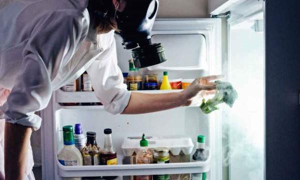Как убрать неприятные запахи из холодильника? Проверенные методы