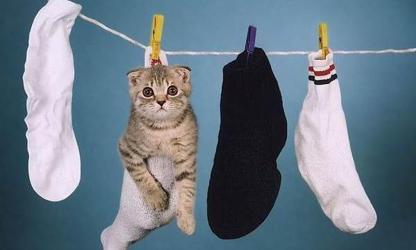 Как правильно стирать шерстяные носки?